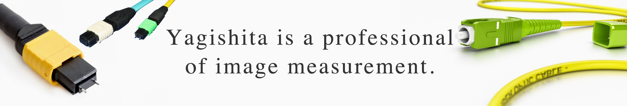 Yagishita is a professional of image measurement